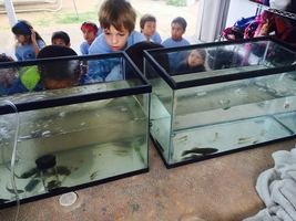 A Visit from NOAA- Fresh Water, Salt Water, Brackish Water